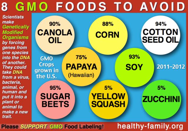 GMO-foods