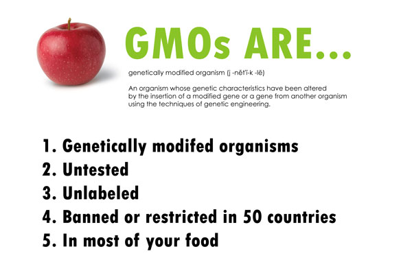 an argument in favor of genetically modified organisms gmos Genetically modified organism (gmo) is commonly used to describe any of these terms and vice versa: genetic modification (gm), gm seeds gmo crops are the product of a specific type of plant breeding where precise changes are made to a plant's dna to give it characteristics that cannot be.
